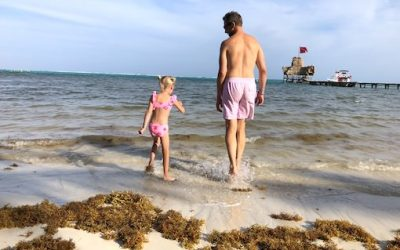 Best Beaches in Belize: What You Should Know about the Seagrass Situation in San Pedro